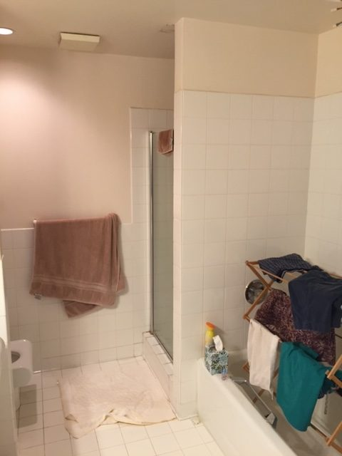 Bathroom before Accent Design remodel